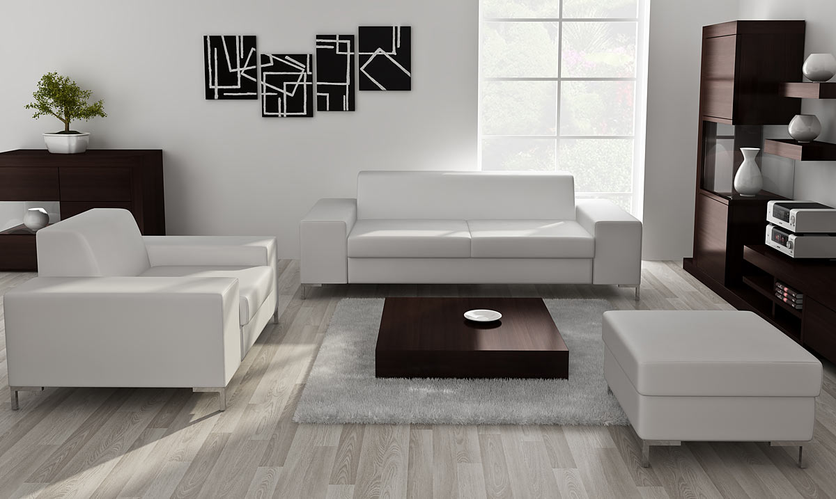 minimalist sofa for the apartment